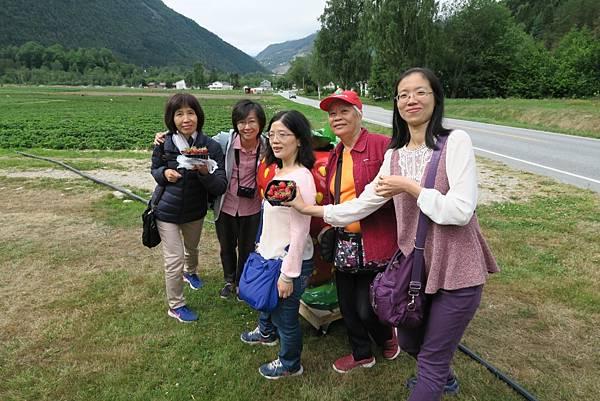 享用酸甜草莓 (4).JPG