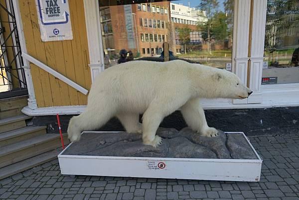 紀念品店外的北極熊 (2).JPG