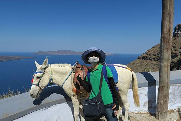 斐拉騎驢子 (2).JPG
