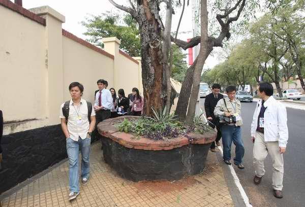 巴拉圭人行道有樹.jpg