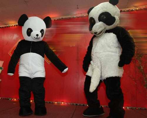 熊貓教配0.jpg