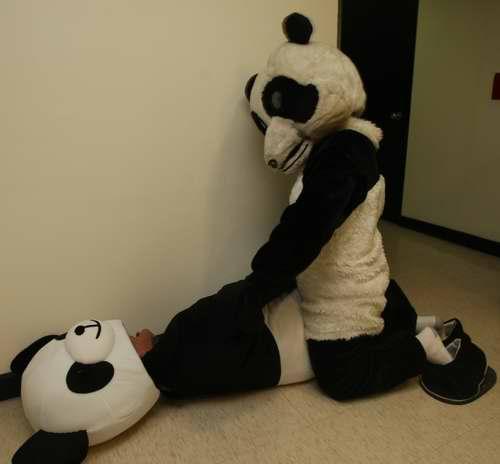 熊貓教配1.jpg