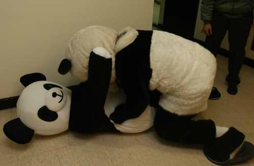 熊貓教配2.jpg