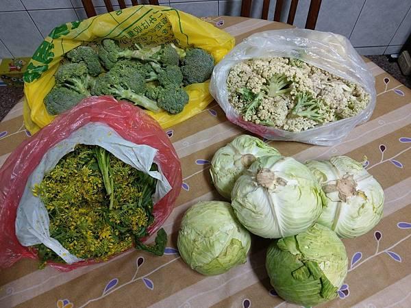 1.1秀娟捐贈蔬菜一批.jpg