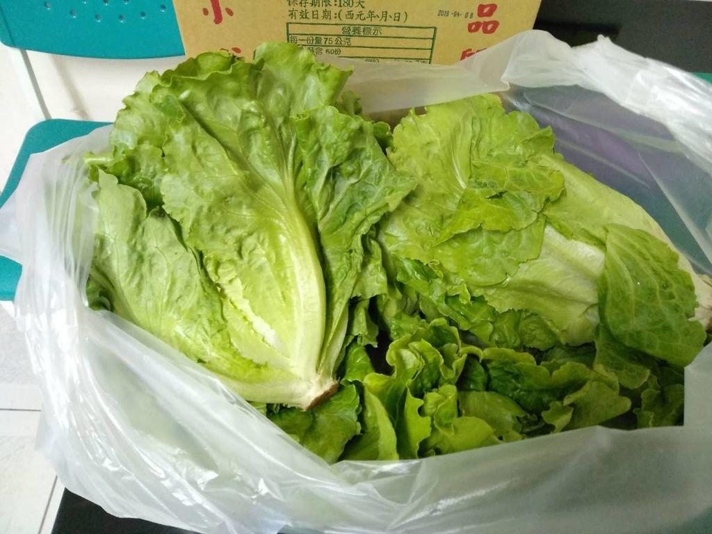 11.2京都廣東粥捐贈新鮮蔬菜一批.jpg