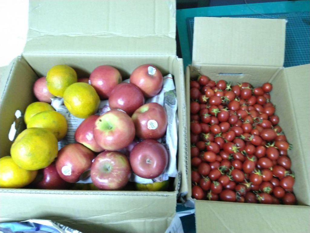 11.30京都廣東粥捐贈水果兩箱.jpg
