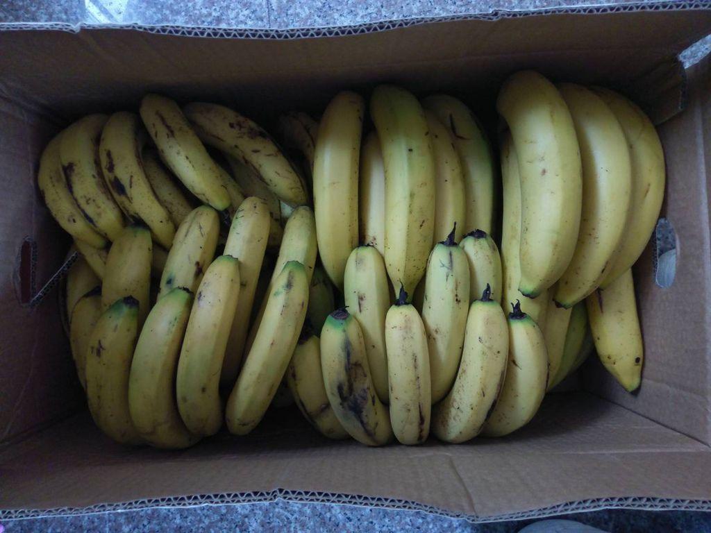 7.17陳記農產捐贈香蕉.jpg