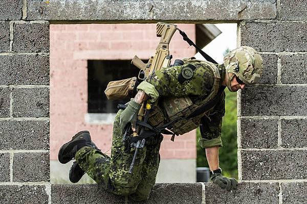 Danish Army (4)