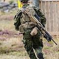 Danish Army (5)