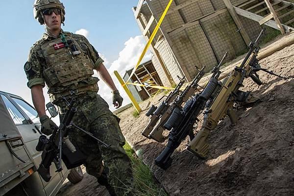 Danish Army (2)