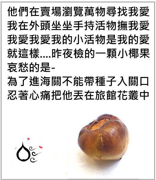 31小椰果