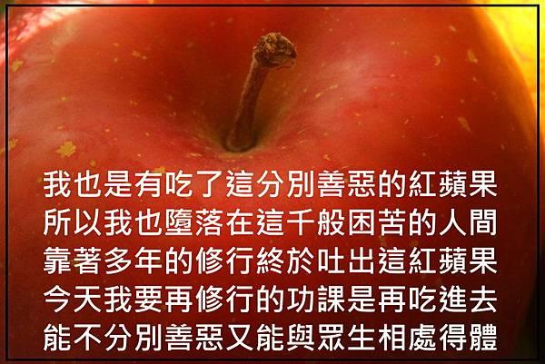 A-紅蘋果