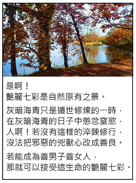 生命原有的艷麗七彩.JPG