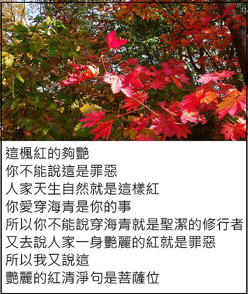一身艷麗的紅不是罪惡.JPG