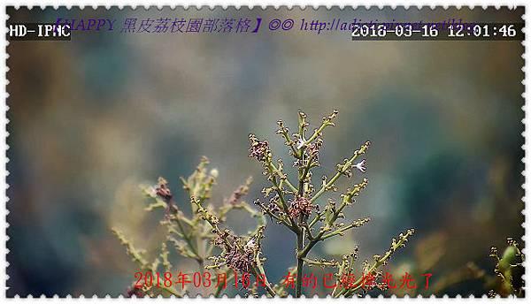 nEO_IMG_04_20180316120158