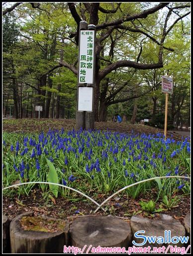 24_圓山公園_07.jpg