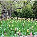 24_圓山公園_18.jpg