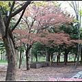 25_北海道神宮_11.jpg