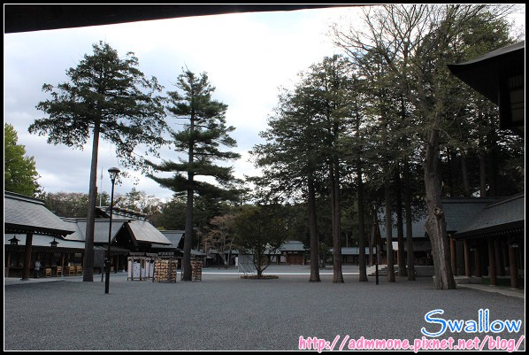 25_北海道神宮_46.jpg
