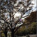 31_札幌大通公園_31.jpg