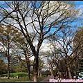 31_札幌大通公園_38.jpg