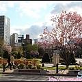 31_札幌大通公園_42.jpg