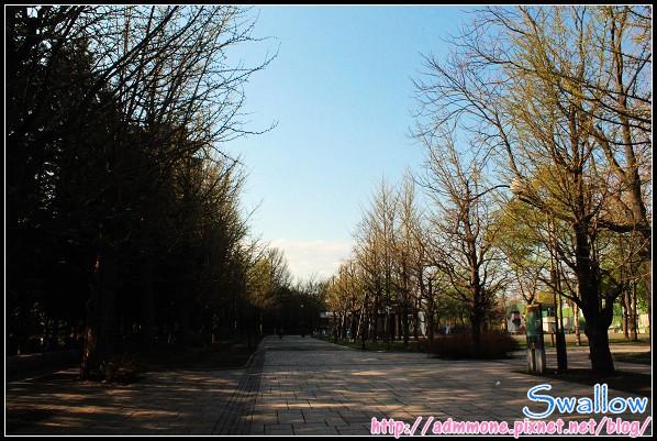 36_07_中島公園.jpg