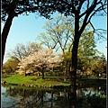36_18_中島公園.jpg