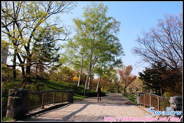 36_21_中島公園.jpg