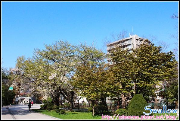 36_28_中島公園.jpg