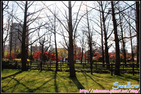 36_36_中島公園.jpg