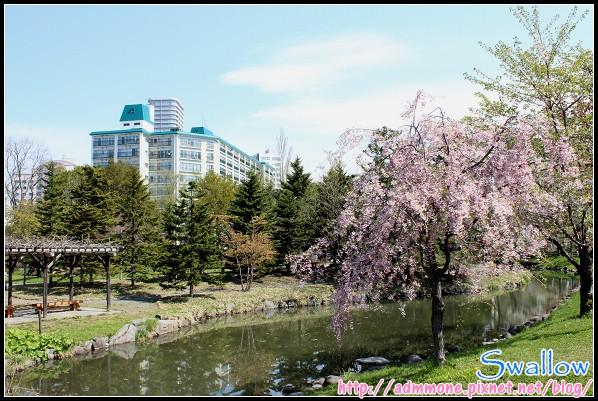 36_120_中島公園.jpg