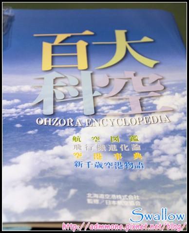 37_新千歲機場_14.jpg