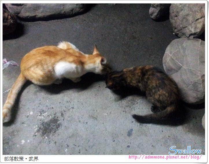 01_21_小吃店貓咪