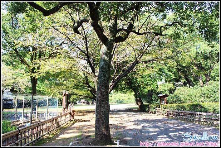 18_11_肥後六花園