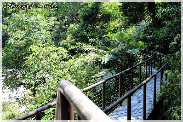 1_新寮瀑布_10_上觀景平台的樓梯