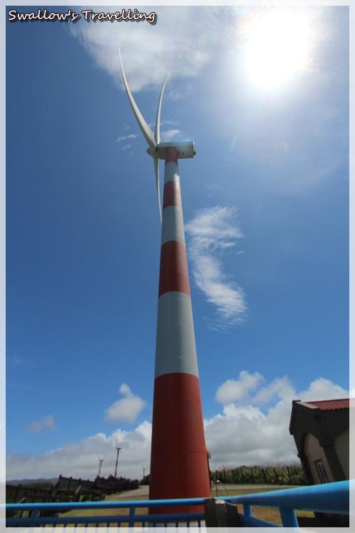 05_頂上的風車