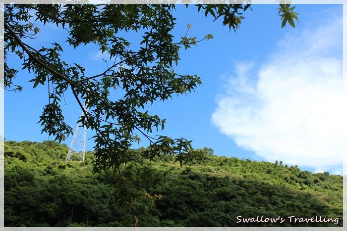 06_美麗青翠的山景