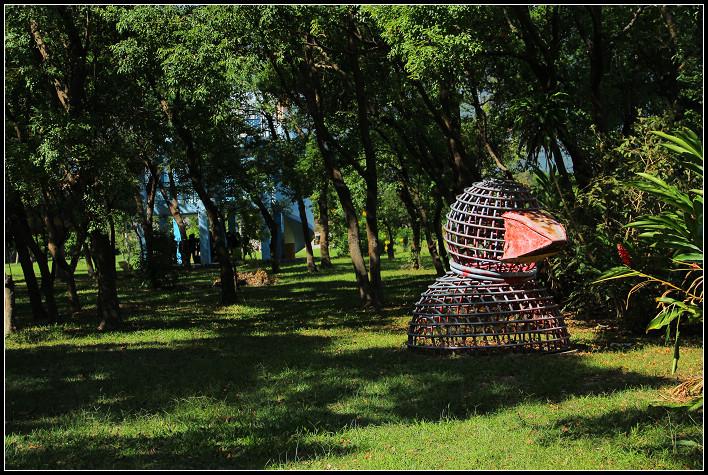 15_啄木鳥