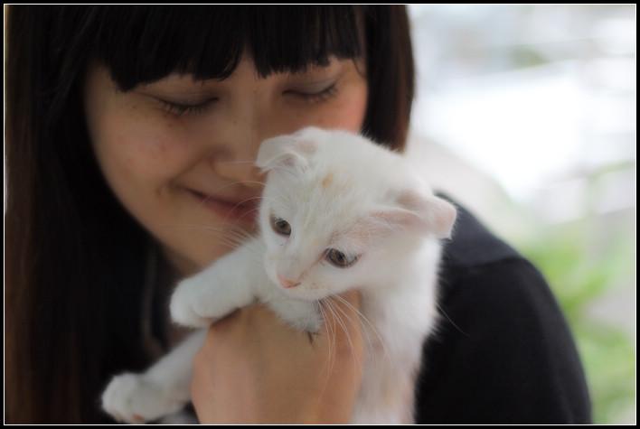22_受寵的白喵