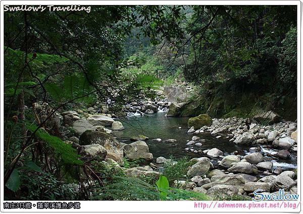 16_水生動植物的天堂