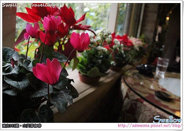 17_窗檯小花
