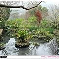 32_生態池