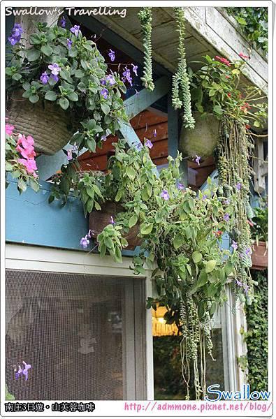 51_屋簷花朵