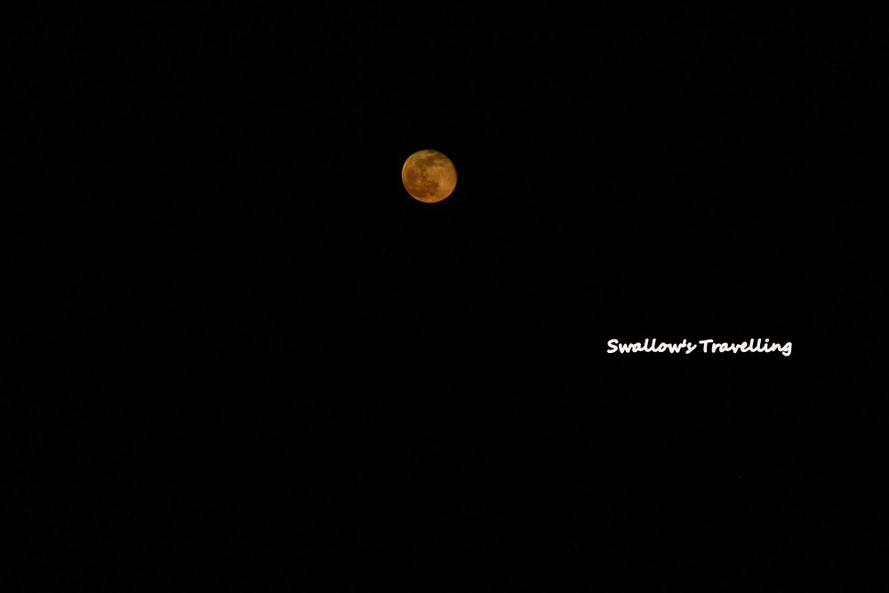 78_大又圓的月亮.jpg