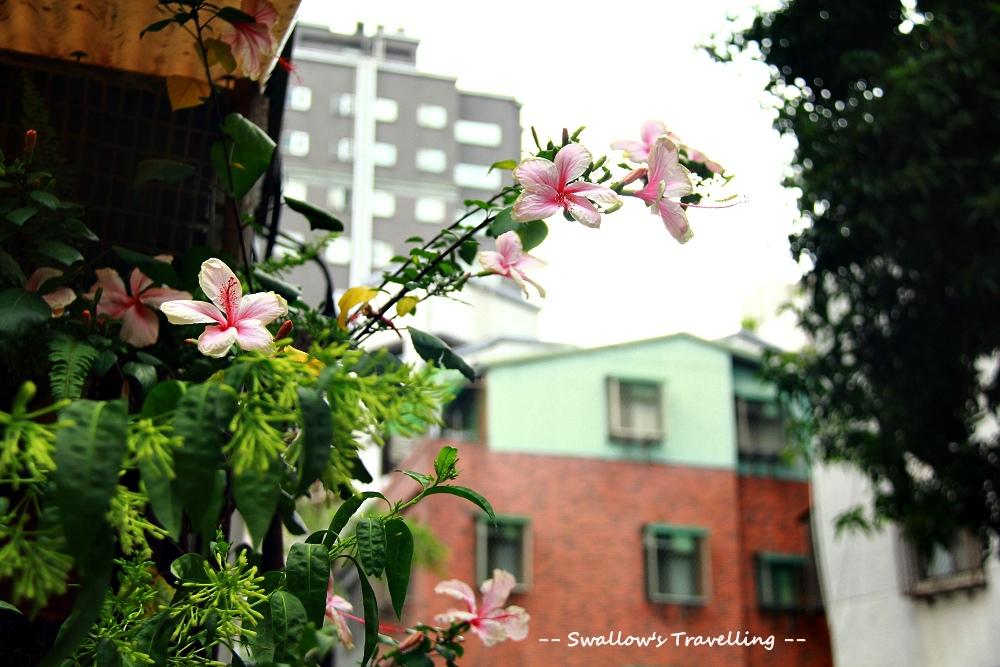 20140119_信義路小巷3.jpg