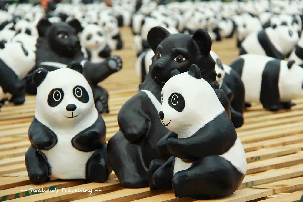 23_貓熊與黑熊.jpg
