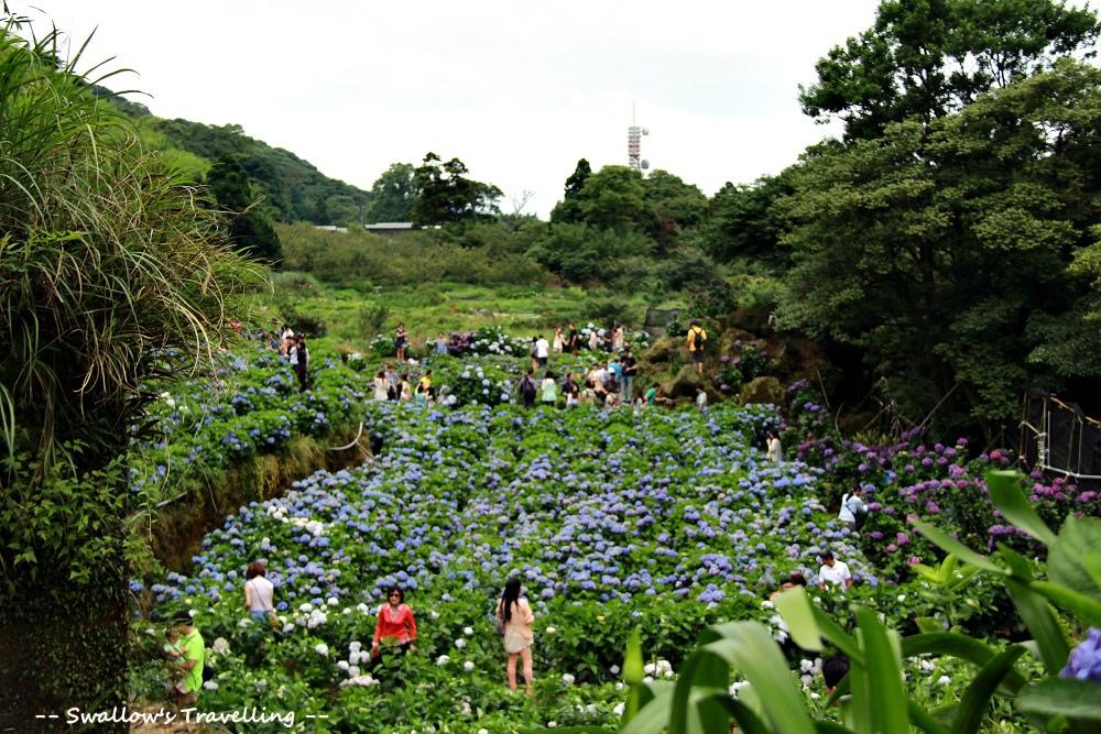 27_繡球花園.jpg