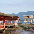 19_神社與鳥居.jpg