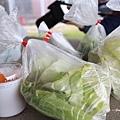07_兔子的食物.jpg